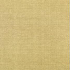 Напольная плитка Aparici Absolut Gold Gres купить за 0 руб.